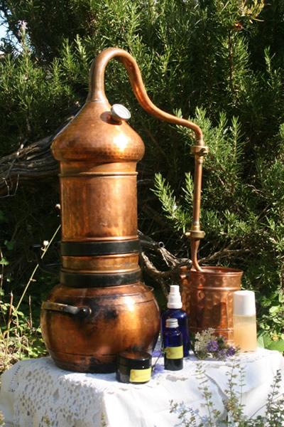 Pflanzenwässer destillieren und Pflegeprodukte herstellen