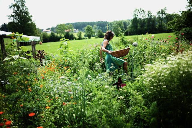 Gärtnernals Statement, durch den Garten mit Permakultur